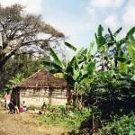 Tanzania Partnerschaft